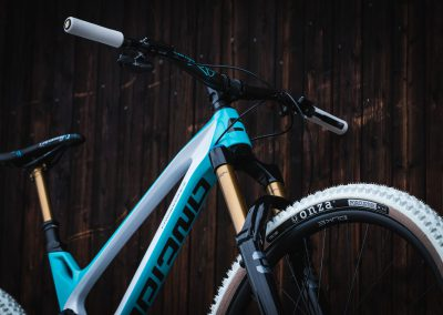 Baby Blue Custom Bikes Antidote (8)