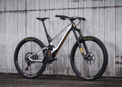 Black & White Custom Bike Antidote (3)