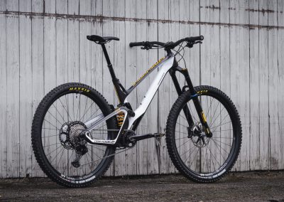 Black & White Custom Bike Antidote (4)