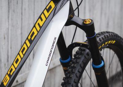 Black & White Custom Bike Antidote (5)