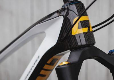 Black & White Custom Bike Antidote (6)